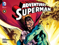 Download Adventures of Superman #14