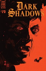 Download Dark Shadows #20