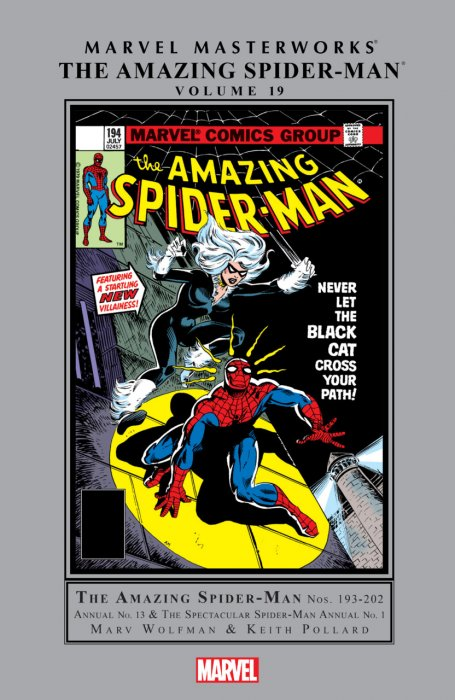 Marvel Masterworks - The Amazing Spider-Man (Volume 19)